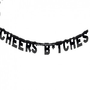 Party letterslinger cheers b'tches 6 meter